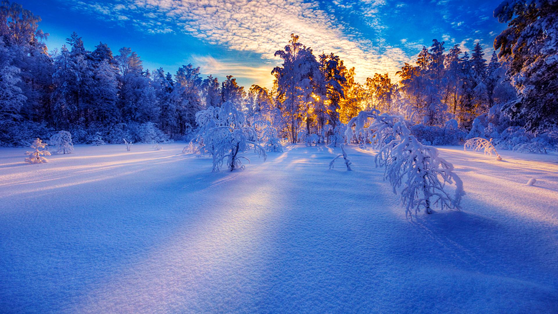 обои зима снежинки для рабочего стола