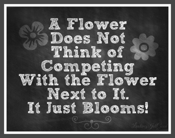 A Flower Does Not Think of Competing With the Flower Next to It. It Just Blooms! | lookingjoligood.wrodpress.com