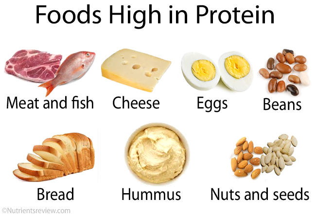 high protein foods | lookingjoligood.wordpress.com