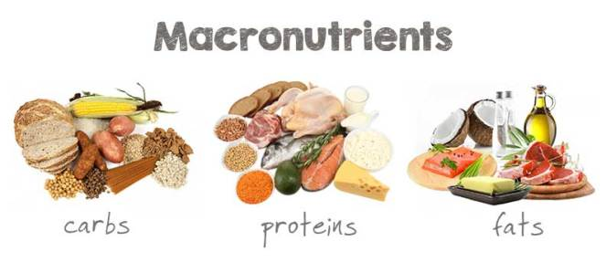macronutrients | lookingjoligood.wordpress.com
