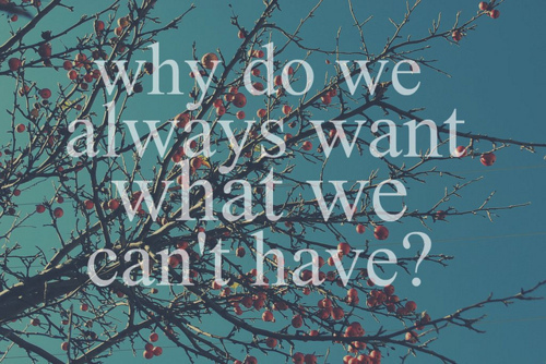 Why do we always want what we can't have | lookingjoligood.bolg