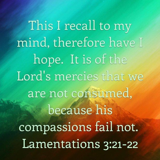 Lamentations 3:21-22 | lookingjoligood.blog