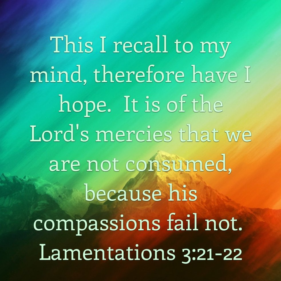 Lamentations 3:21-22 | lookingjoligood.blog