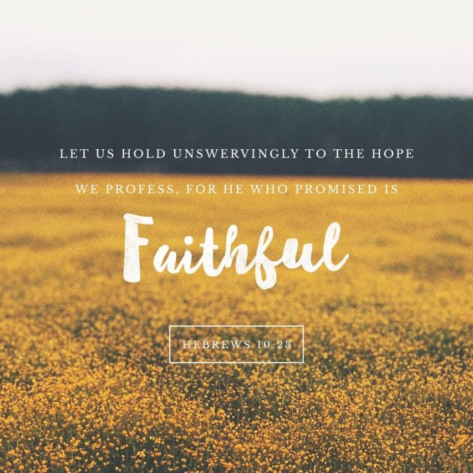 Hebrews 10:23 | lookingjoligood.blog