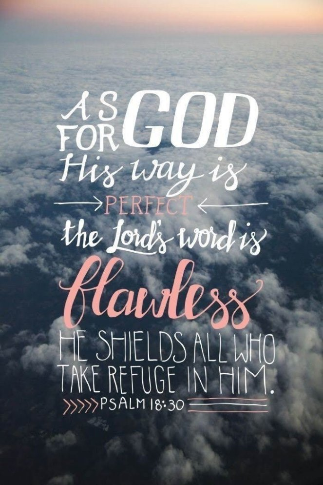 God's Way Is Perfect | lookingjoligood.blog
